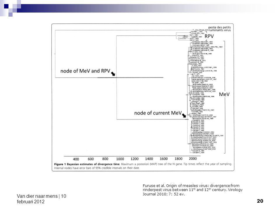 20 Van dier naar mens | 10 februari 2012 Furuse et al. Origin of measles virus: divergence from rinderpest virus between 11 th and 12 th century. Viro