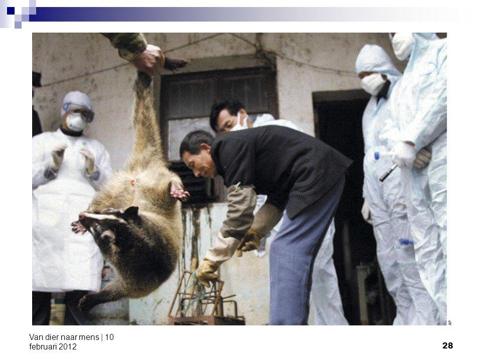 28 Van dier naar mens | 10 februari 2012