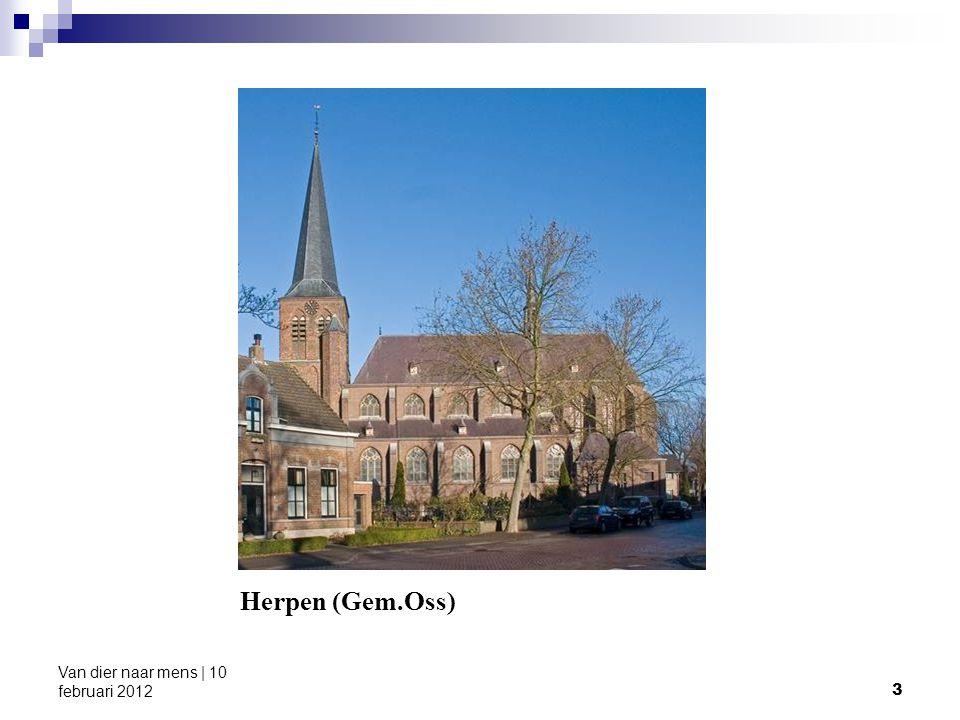 4 Van dier naar mens | 10 februari 2012 Table 2.Number of goats in The Netherlands H.J.