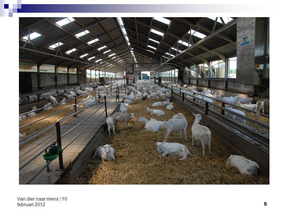 16 Van dier naar mens | 10 februari 2012 Wolfe et al.