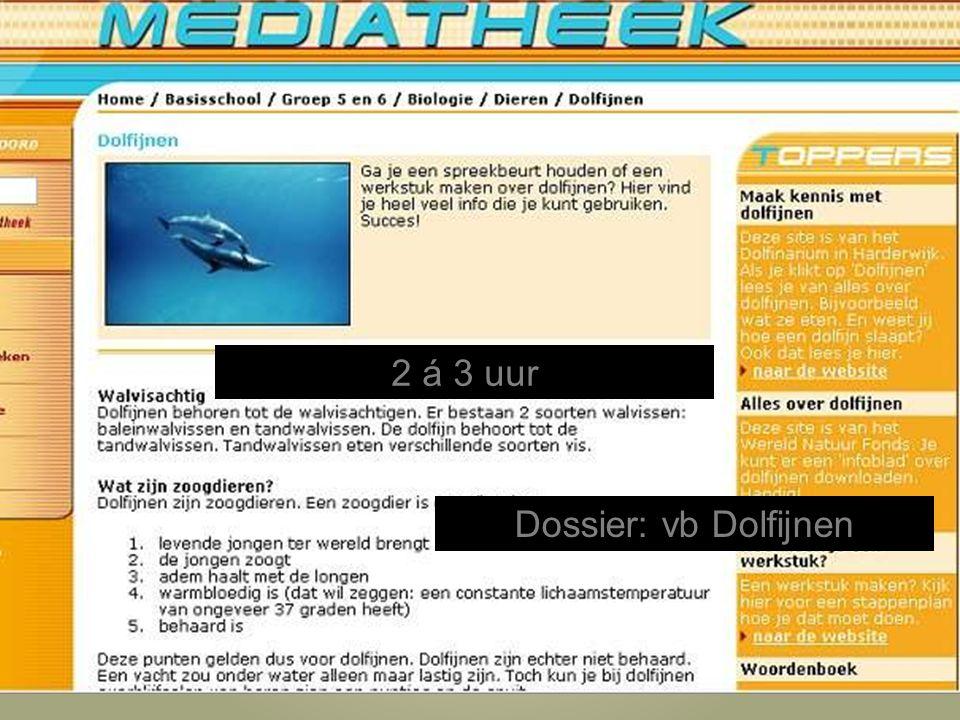 Dossier: vb Dolfijnen 2 á 3 uur