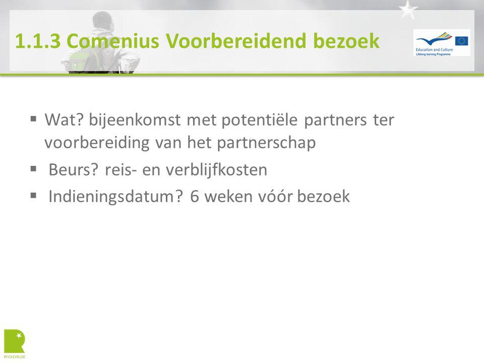 1.1.3 Comenius Voorbereidend bezoek  Wat? bijeenkomst met potentiële partners ter voorbereiding van het partnerschap  Beurs? reis- en verblijfkosten