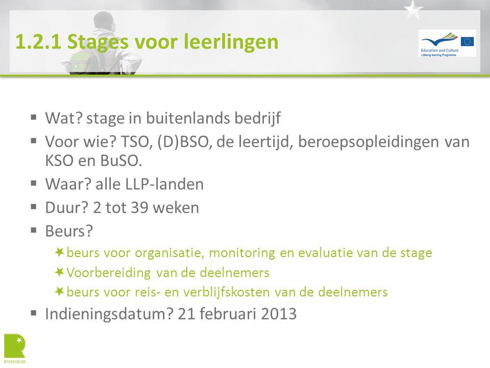1.2.1 Stages voor leerlingen  Wat? stage in buitenlands bedrijf  Voor wie? TSO, (D)BSO, de leertijd, beroepsopleidingen van KSO en BuSO.  Waar? all