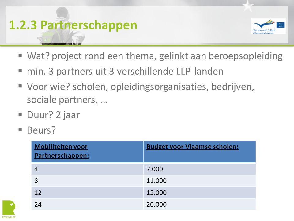 1.2.3 Partnerschappen  Wat? project rond een thema, gelinkt aan beroepsopleiding  min. 3 partners uit 3 verschillende LLP-landen  Voor wie? scholen
