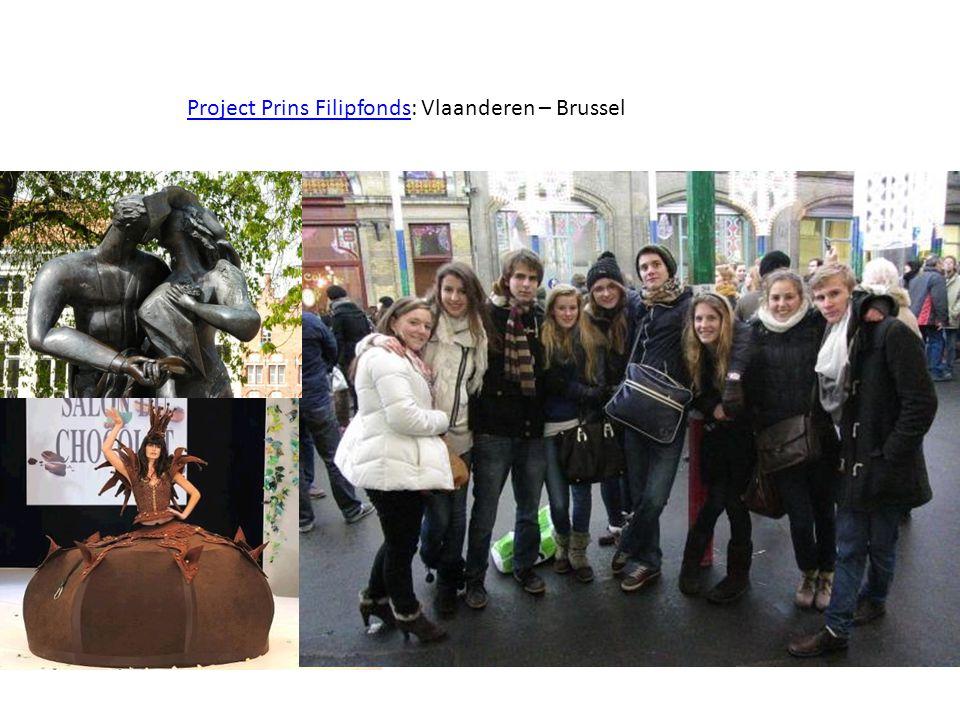 Project Prins FilipfondsProject Prins Filipfonds: Vlaanderen – Brussel