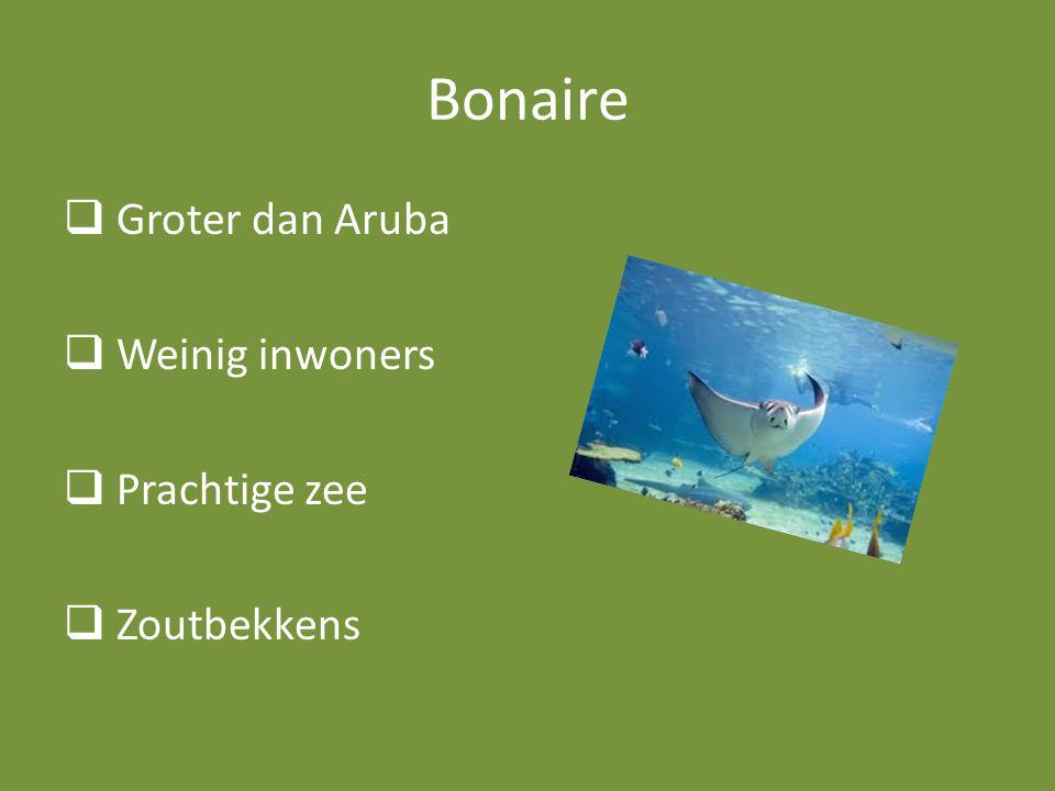 Bonaire  Groter dan Aruba  Weinig inwoners  Prachtige zee  Zoutbekkens