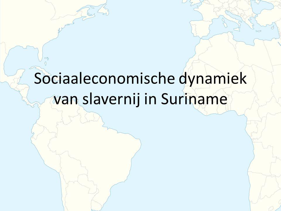 Sociaaleconomische dynamiek van slavernij in Suriname