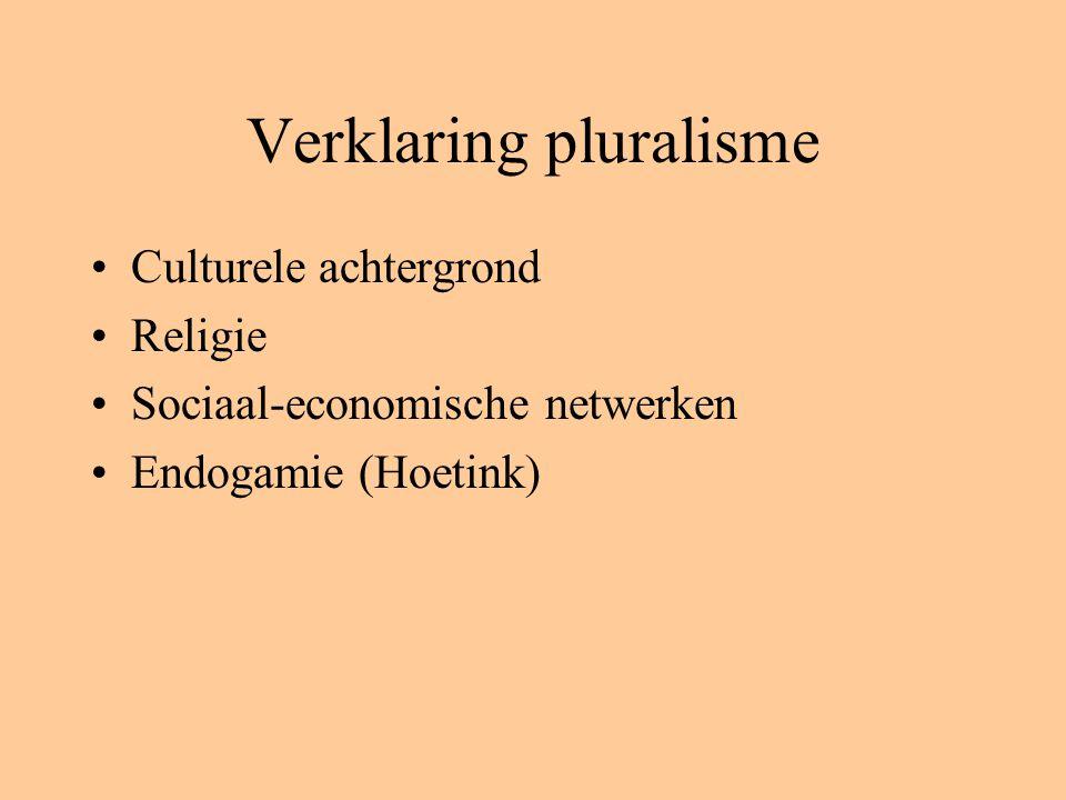 Verklaring pluralisme Culturele achtergrond Religie Sociaal-economische netwerken Endogamie (Hoetink)