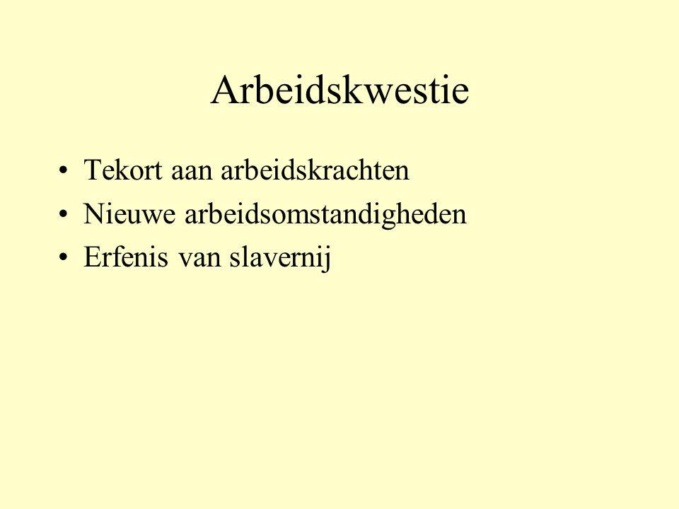 Arbeidskwestie Tekort aan arbeidskrachten Nieuwe arbeidsomstandigheden Erfenis van slavernij