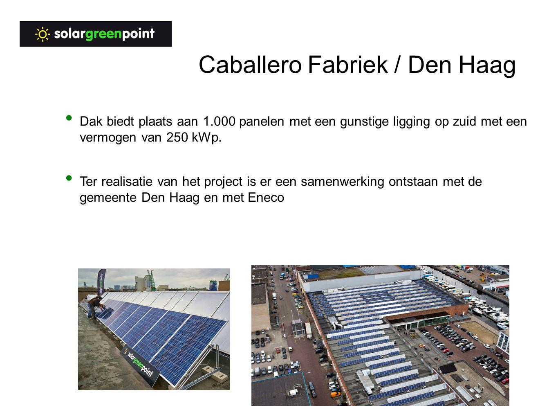 Caballero Fabriek / Den Haag Dak biedt plaats aan 1.000 panelen met een gunstige ligging op zuid met een vermogen van 250 kWp.