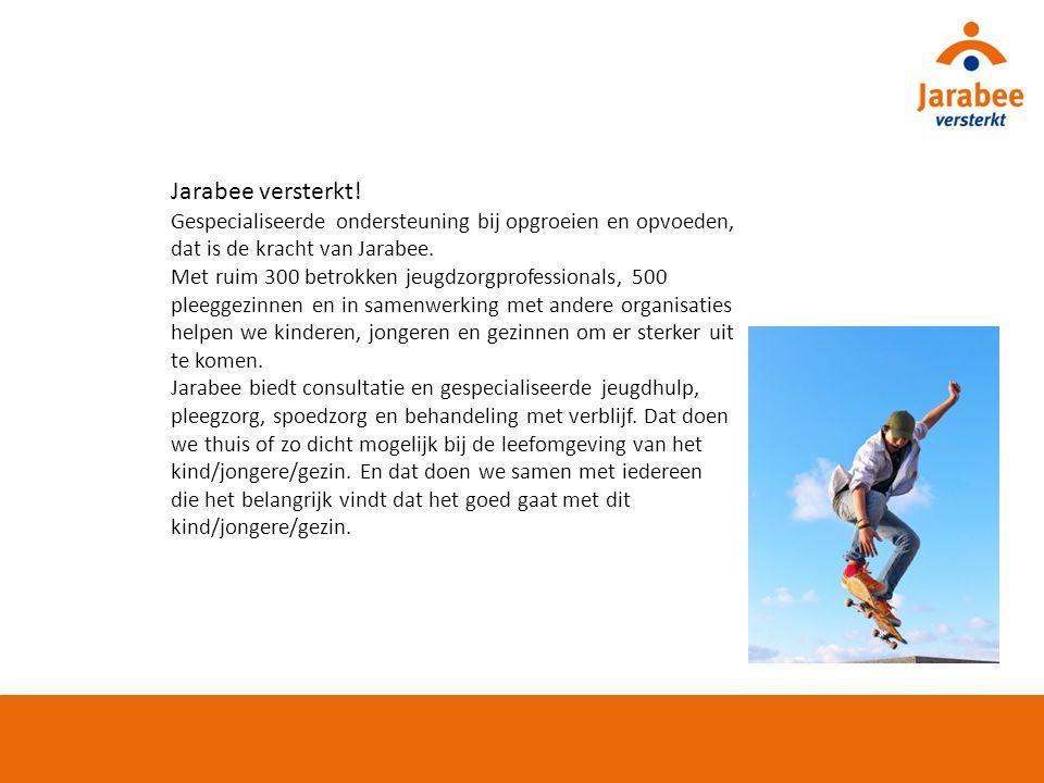 JARABEE 2.0 STIP OP DE HORIZON Transitie en transformatie jeugdzorg 2 015 Flexibilisering van zorg Cliënt beheert zijn eigen portfolio Professional werkt in wijkgerichte of thematische netwerken