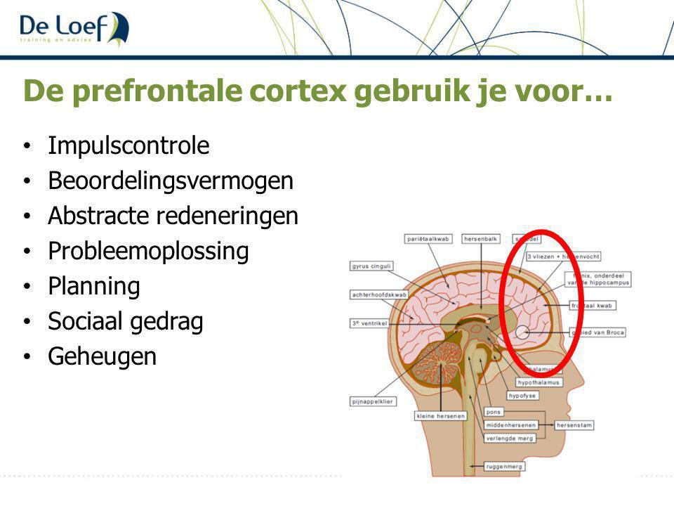 De prefrontale cortex gebruik je voor… Impulscontrole Beoordelingsvermogen Abstracte redeneringen Probleemoplossing Planning Sociaal gedrag Geheugen
