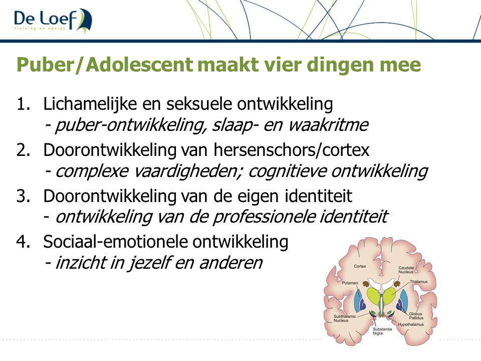 Puber/Adolescent maakt vier dingen mee 1.Lichamelijke en seksuele ontwikkeling - puber-ontwikkeling, slaap- en waakritme 2.Doorontwikkeling van hersenschors/cortex - complexe vaardigheden; cognitieve ontwikkeling 3.Doorontwikkeling van de eigen identiteit - ontwikkeling van de professionele identiteit 4.Sociaal-emotionele ontwikkeling - inzicht in jezelf en anderen