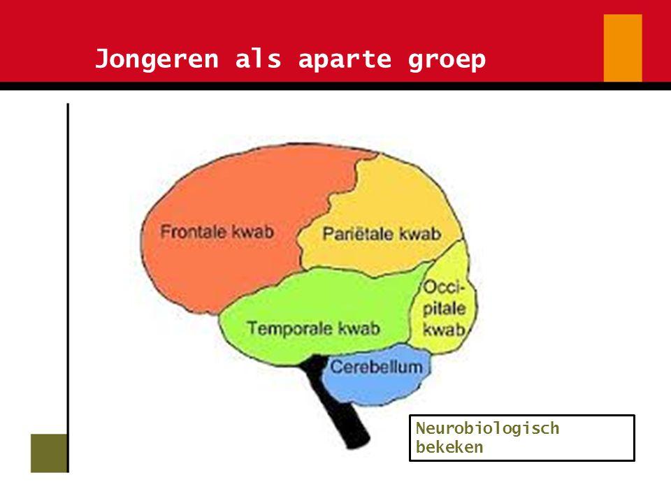 Jongeren als aparte groep Neurobiologisch bekeken