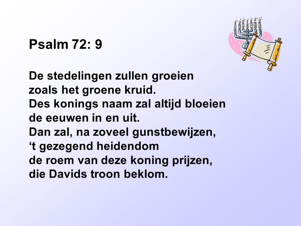 Psalm 72: 9 De stedelingen zullen groeien zoals het groene kruid. Des konings naam zal altijd bloeien de eeuwen in en uit. Dan zal, na zoveel gunstbew