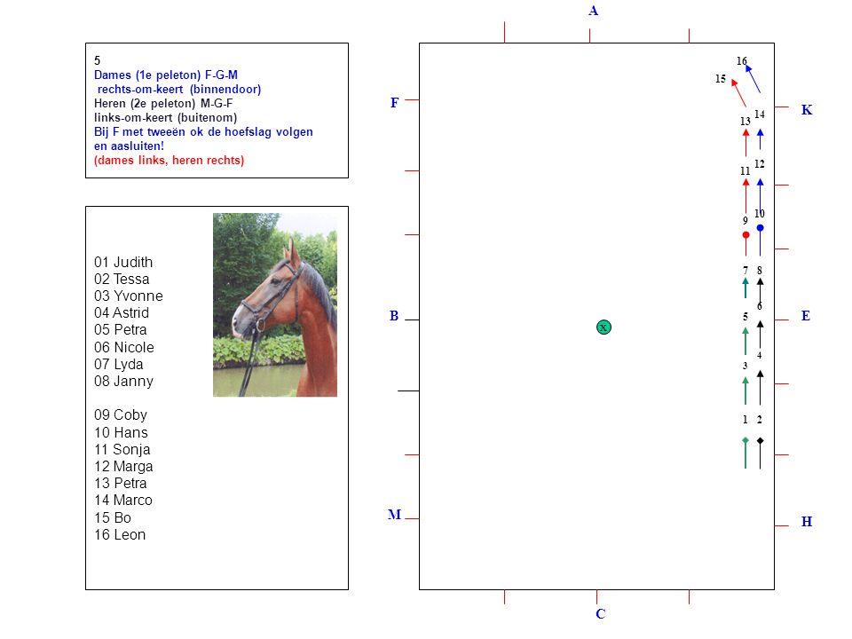 1 2 3 4 5 6 7 8 9 10 12 11 13 14 15 16 17 18 19 20 A H M F K EB C x 6 Lange zijde K-H met enen rechts, Tandem rijden, overzijde rechts en plaats wisselen.