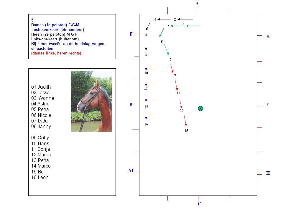 1 2 3 4 5 6 8 7 9 `10 11 12 13 14 15 16 5 Dames (1e peloton) F-G-M rechtsomkeert (binnendoor) Heren (2e peloton) M-G-F links-om-keert (buitenom) Bij F met tweeën op de hoefslag volgen en aasluiten.