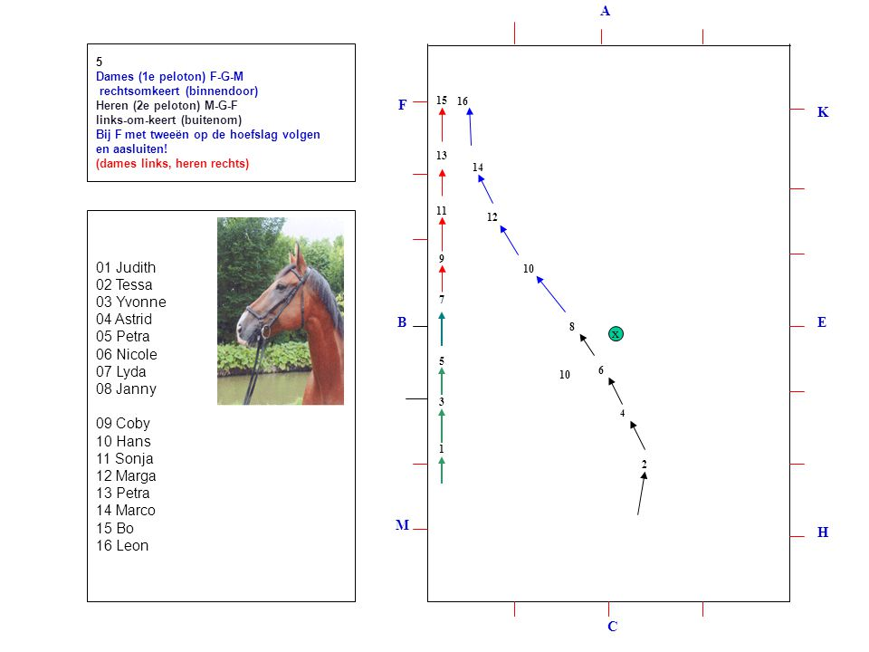 1 2 3 4 5 6 7 8 9 10 12 1113 14 15 16 5 Dames (1e peloton) F-G-M rechtsomkeert (binnendoor) Heren (2e peloton) M-G-F links-om-keert (buitenom) Bij F met tweeën op de hoefslag volgen en aasluiten.