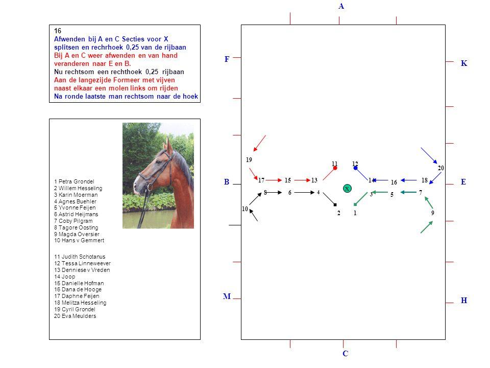 12 3 4 5 678 9 10 1211 131415 16 1718 19 20 16 Afwenden bij A en C Secties voor X splitsen en rechrhoek 0,25 van de rijbaan Bij A en C weer afwenden en van hand veranderen naar E en B.