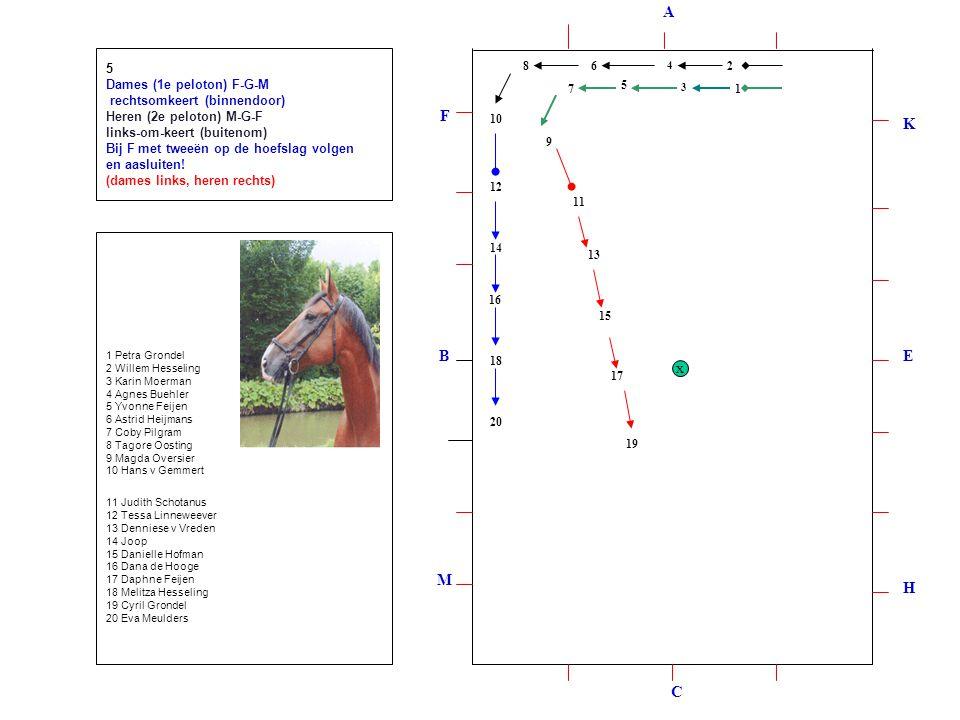12 3 4 5 6 7 8 9 10 12 11 13 14 15 16 17 18 19 20 5 Dames (1e peloton) F-G-M rechtsomkeert (binnendoor) Heren (2e peloton) M-G-F links-om-keert (buitenom) Bij F met tweeën op de hoefslag volgen en aasluiten.