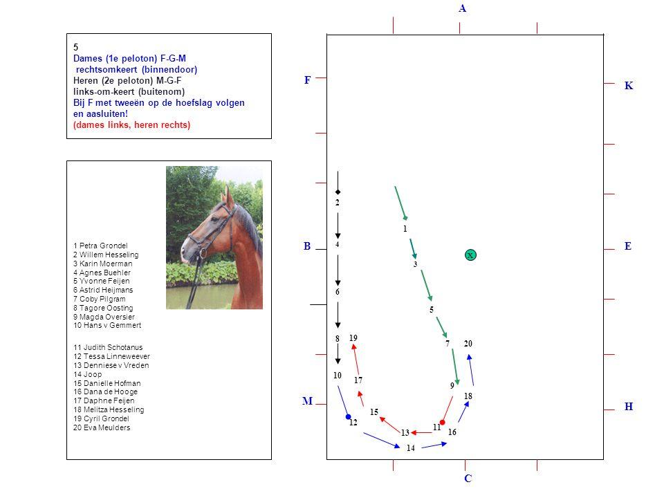 1 2 3 4 5 6 7 8 9 10 12 11 13 14 15 16 17 18 19 20 5 Dames (1e peloton) F-G-M rechtsomkeert (binnendoor) Heren (2e peloton) M-G-F links-om-keert (buitenom) Bij F met tweeën op de hoefslag volgen en aasluiten.