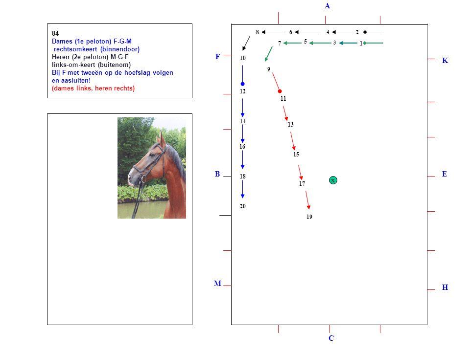 12 3 4 5 6 7 8 9 10 12 11 13 14 15 16 17 18 19 20 84 Dames (1e peloton) F-G-M rechtsomkeert (binnendoor) Heren (2e peloton) M-G-F links-om-keert (buitenom) Bij F met tweeën op de hoefslag volgen en aasluiten.