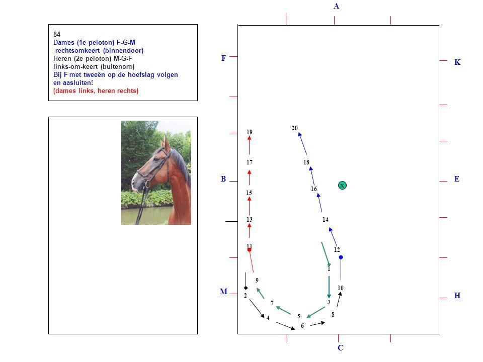 1 2 3 4 5 6 7 8 9 10 12 11 13 14 15 16 17 18 19 20 84 Dames (1e peloton) F-G-M rechtsomkeert (binnendoor) Heren (2e peloton) M-G-F links-om-keert (buitenom) Bij F met tweeën op de hoefslag volgen en aasluiten.