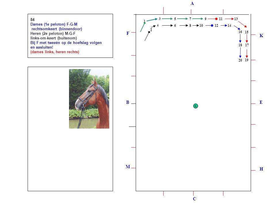 1 2 3 4 5 6 7 8 9 1012 1113 14 15 16 1718 19 20 84 Dames (1e peloton) F-G-M rechtsomkeert (binnendoor) Heren (2e peloton) M-G-F links-om-keert (buitenom) Bij F met tweeën op de hoefslag volgen en aasluiten.