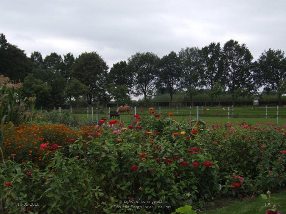 14-09-201017 ZijActief Koningslust Excursie Zorgtuinderij 'de Lorr'