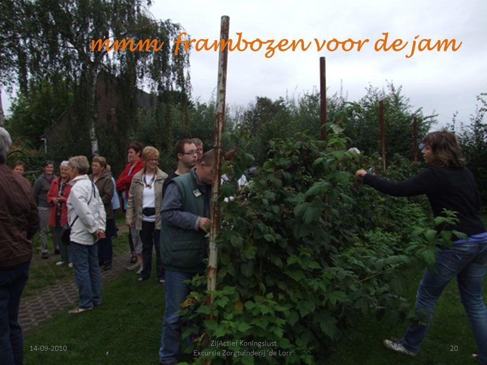 14-09-201020 ZijActief Koningslust Excursie Zorgtuinderij 'de Lorr' mmm frambozen voor de jam
