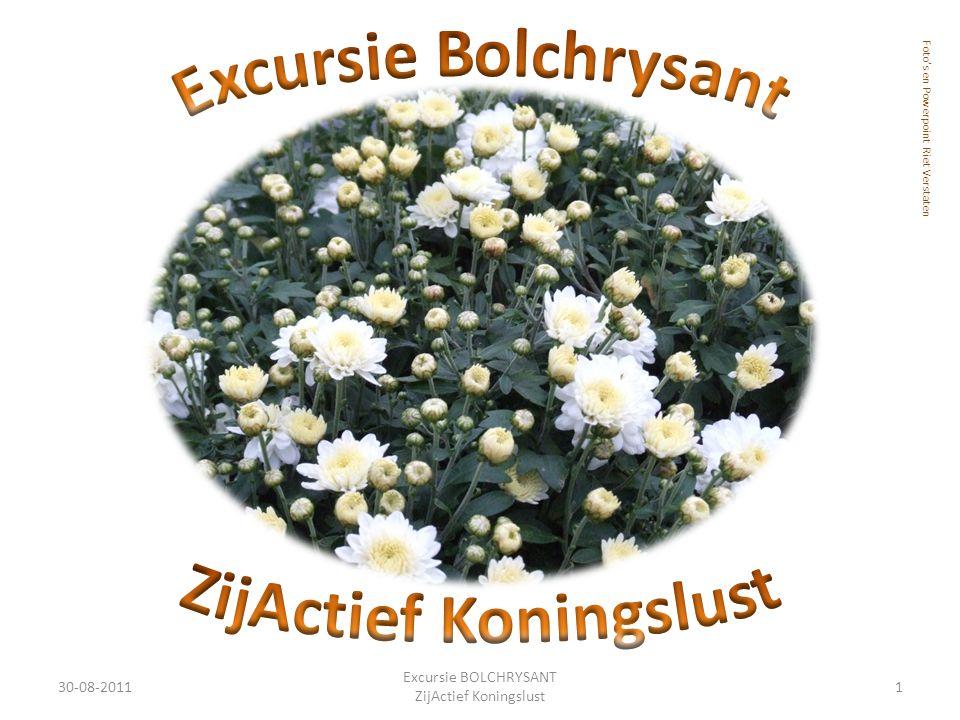 30-08-20111 Excursie BOLCHRYSANT ZijActief Koningslust Foto's en Powerpoint Riet Verstaten