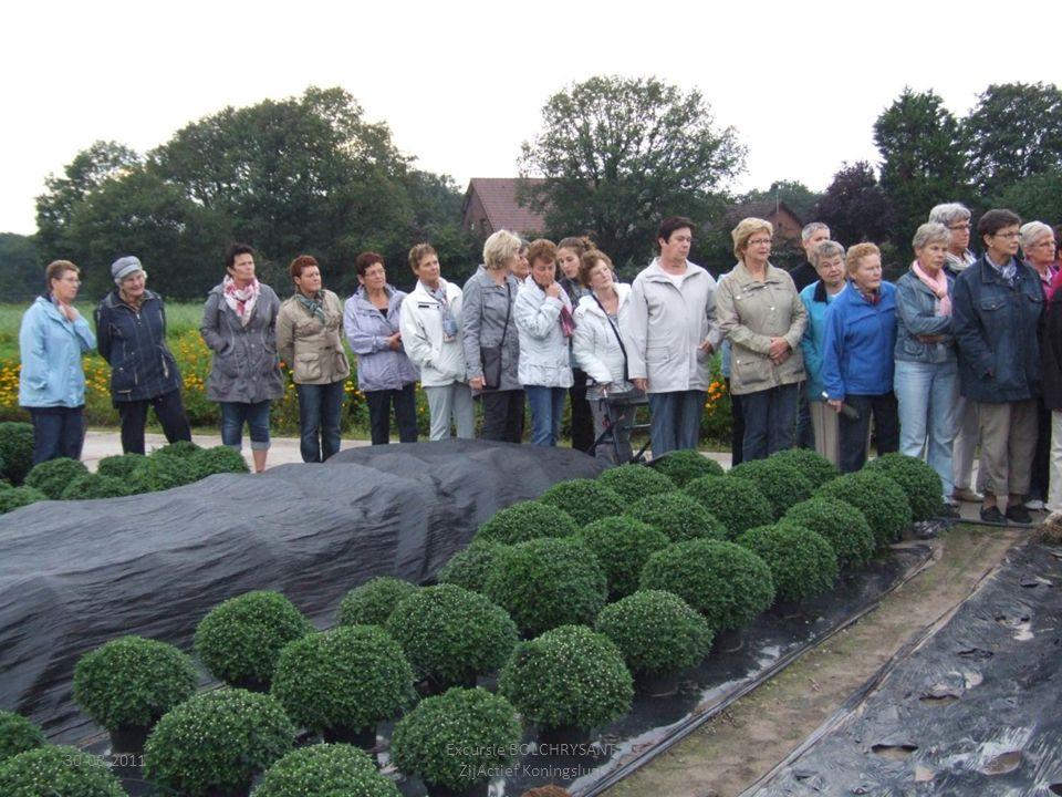 30-08-201115 Excursie BOLCHRYSANT ZijActief Koningslust