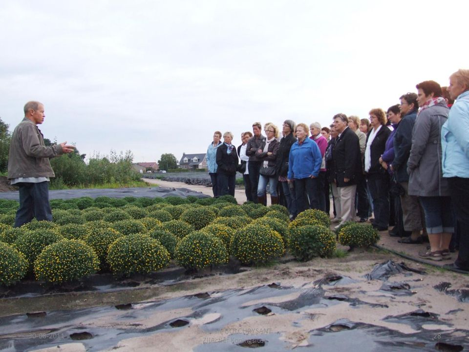 30-08-201128 Excursie BOLCHRYSANT ZijActief Koningslust