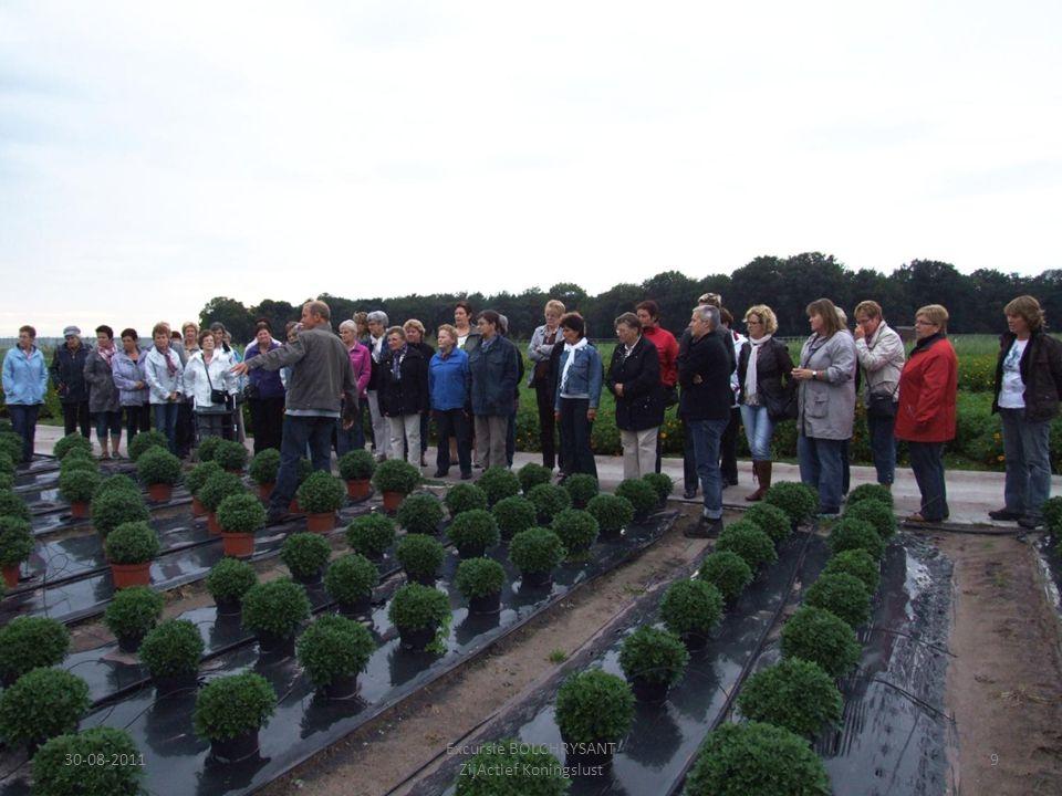 30-08-20119 Excursie BOLCHRYSANT ZijActief Koningslust