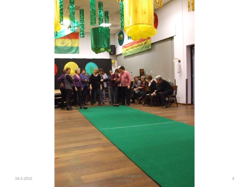 14-2-20124 ZijActief Koningslust KOERSBAL