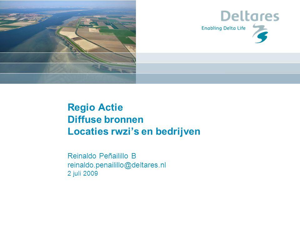 Regio Actie Diffuse bronnen Locaties rwzi's en bedrijven Reinaldo Peñailillo B reinaldo.penailillo@deltares.nl 2 juli 2009