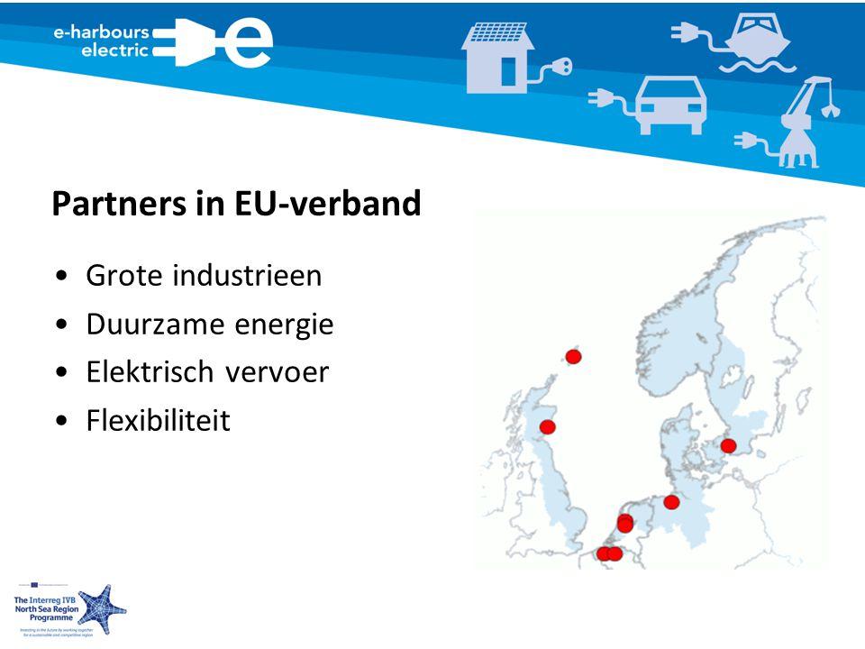 Partners in EU-verband Grote industrieen Duurzame energie Elektrisch vervoer Flexibiliteit