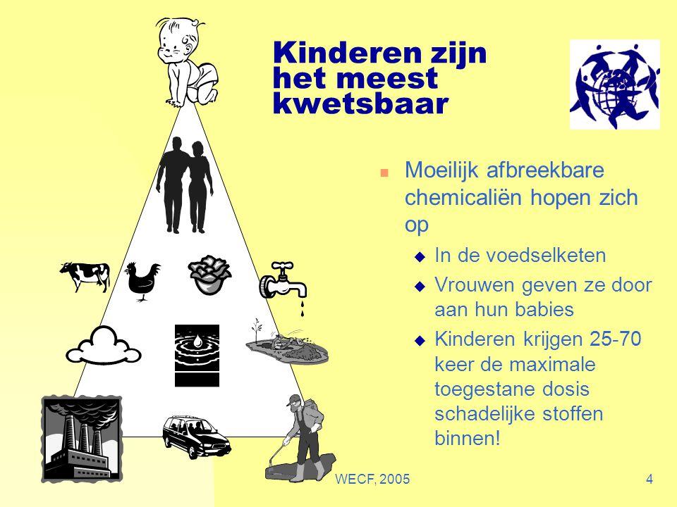 WECF, 20054 Kinderen zijn het meest kwetsbaar Moeilijk afbreekbare chemicaliën hopen zich op  In de voedselketen  Vrouwen geven ze door aan hun babi