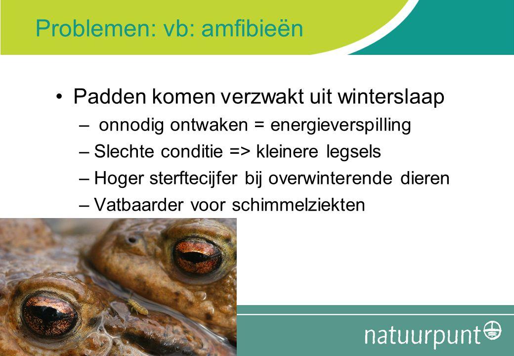 Problemen: vb: amfibieën Padden komen verzwakt uit winterslaap – onnodig ontwaken = energieverspilling –Slechte conditie => kleinere legsels –Hoger st