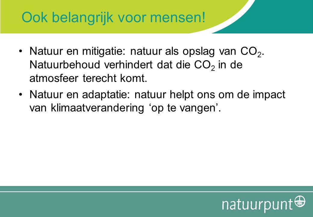 Ook belangrijk voor mensen! Natuur en mitigatie: natuur als opslag van CO 2. Natuurbehoud verhindert dat die CO 2 in de atmosfeer terecht komt. Natuur