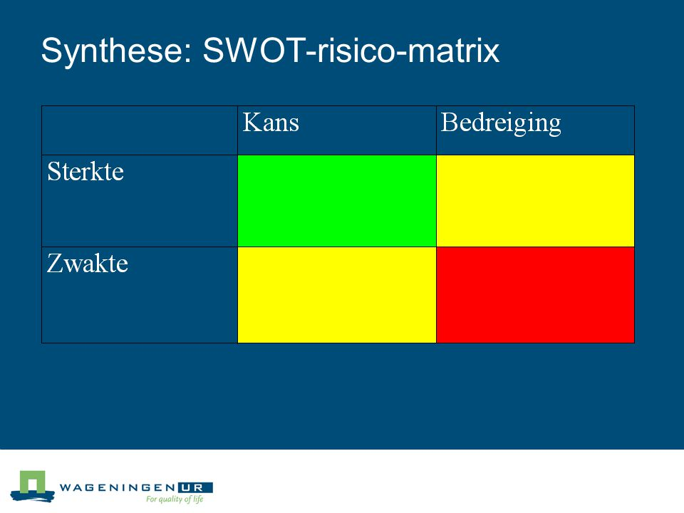 Synthese: SWOT-risico-matrix