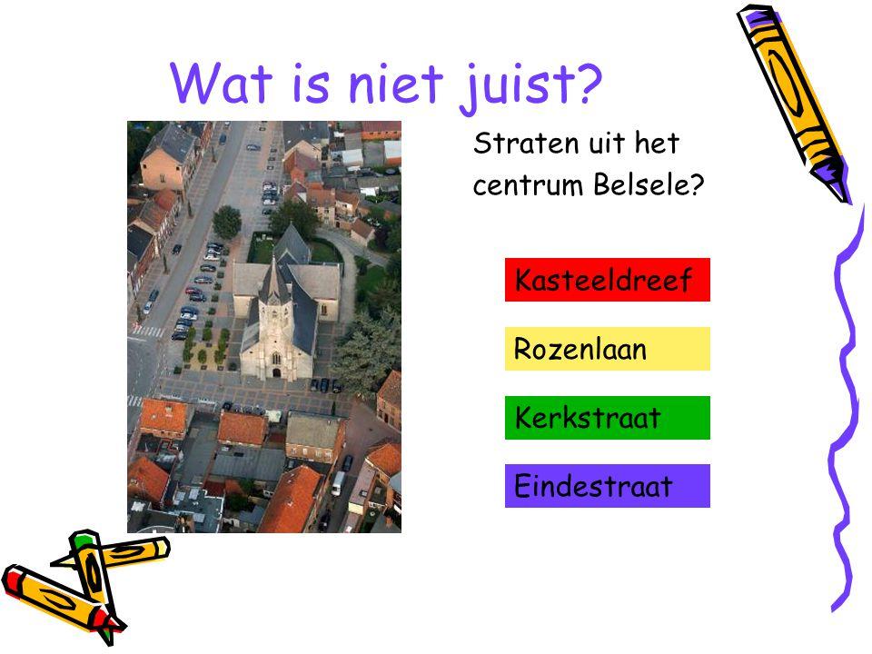 Wat is niet juist? Straten uit het centrum Belsele? Kasteeldreef Rozenlaan Kerkstraat Eindestraat