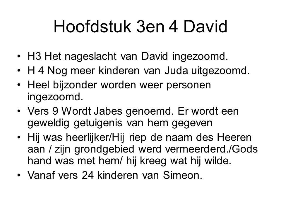 Hoofdstuk 3en 4 David H3 Het nageslacht van David ingezoomd.