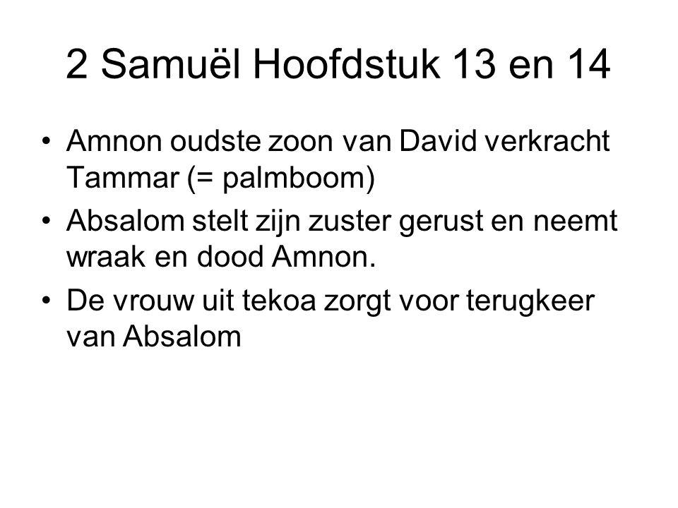 2 Samuël Hoofdstuk 13 en 14 Amnon oudste zoon van David verkracht Tammar (= palmboom) Absalom stelt zijn zuster gerust en neemt wraak en dood Amnon. D