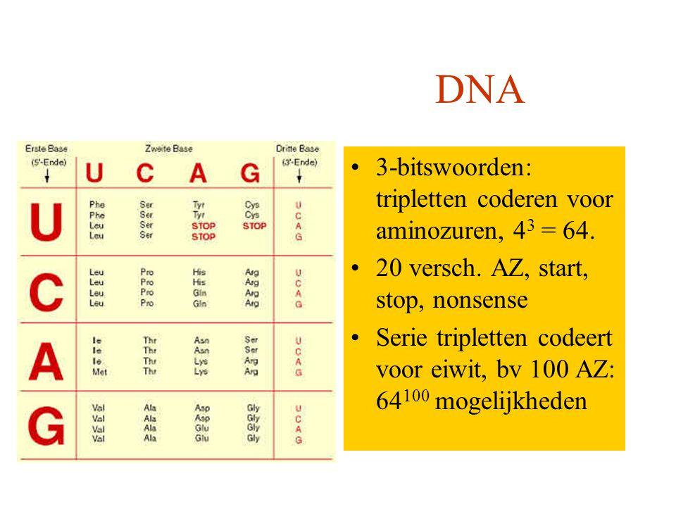 Computer DNA..bitswoord: hoe meer bits hoe meer mogelijkheden, b.v.