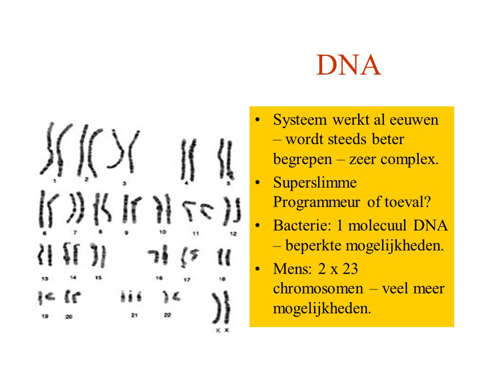 Systemen worden steeds verder verbeterd – steeds meer mogelijkheden Slimme programmeurs Computer DNA Systeem werkt al eeuwen – wordt steeds beter begrepen – zeer complex.