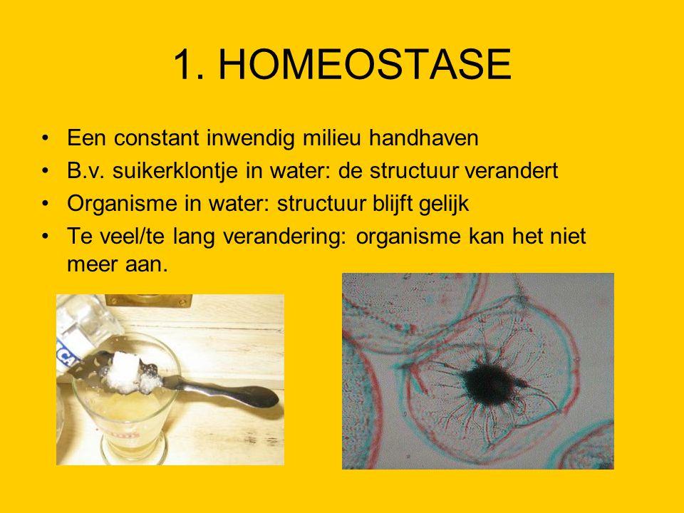 1. HOMEOSTASE Een constant inwendig milieu handhaven B.v. suikerklontje in water: de structuur verandert Organisme in water: structuur blijft gelijk T