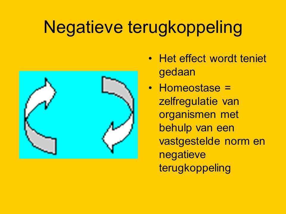 Negatieve terugkoppeling Het effect wordt teniet gedaan Homeostase = zelfregulatie van organismen met behulp van een vastgestelde norm en negatieve te