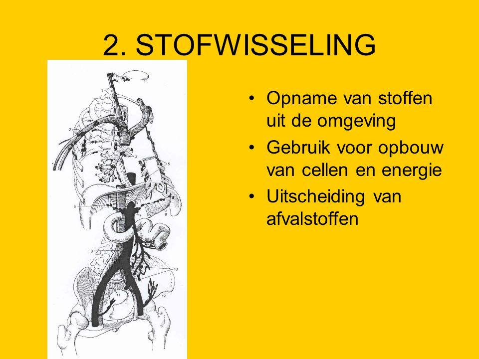 2. STOFWISSELING Opname van stoffen uit de omgeving Gebruik voor opbouw van cellen en energie Uitscheiding van afvalstoffen