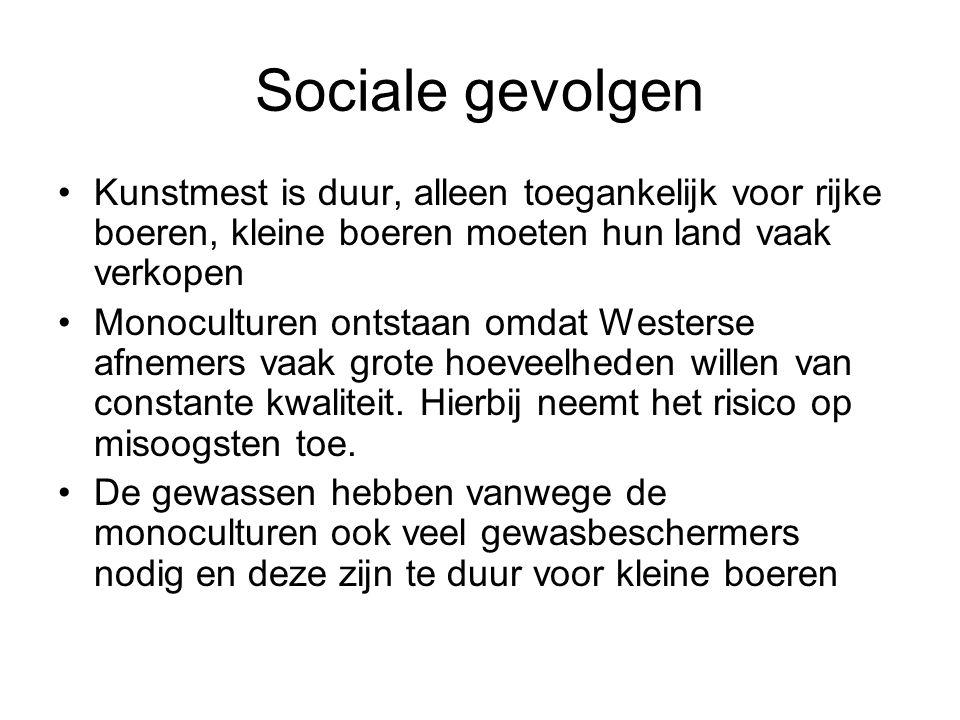 Sociale gevolgen Kunstmest is duur, alleen toegankelijk voor rijke boeren, kleine boeren moeten hun land vaak verkopen Monoculturen ontstaan omdat Westerse afnemers vaak grote hoeveelheden willen van constante kwaliteit.